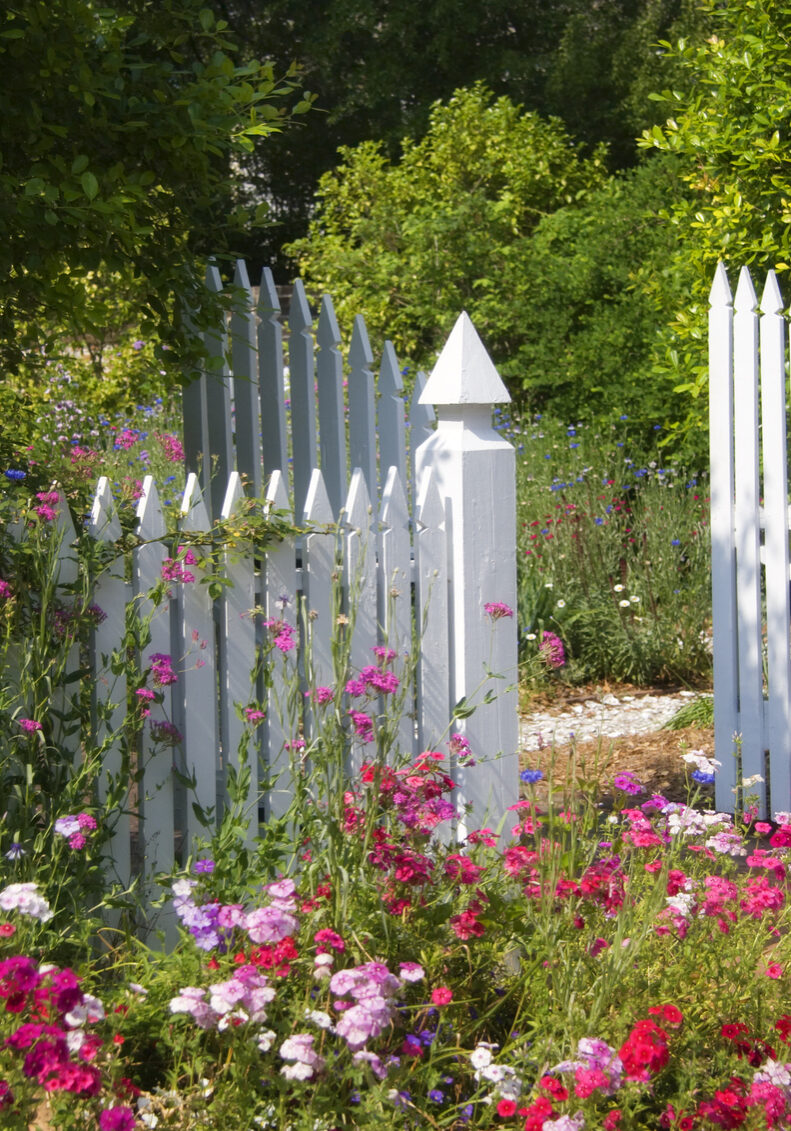 Beautiful Garden with Fencing